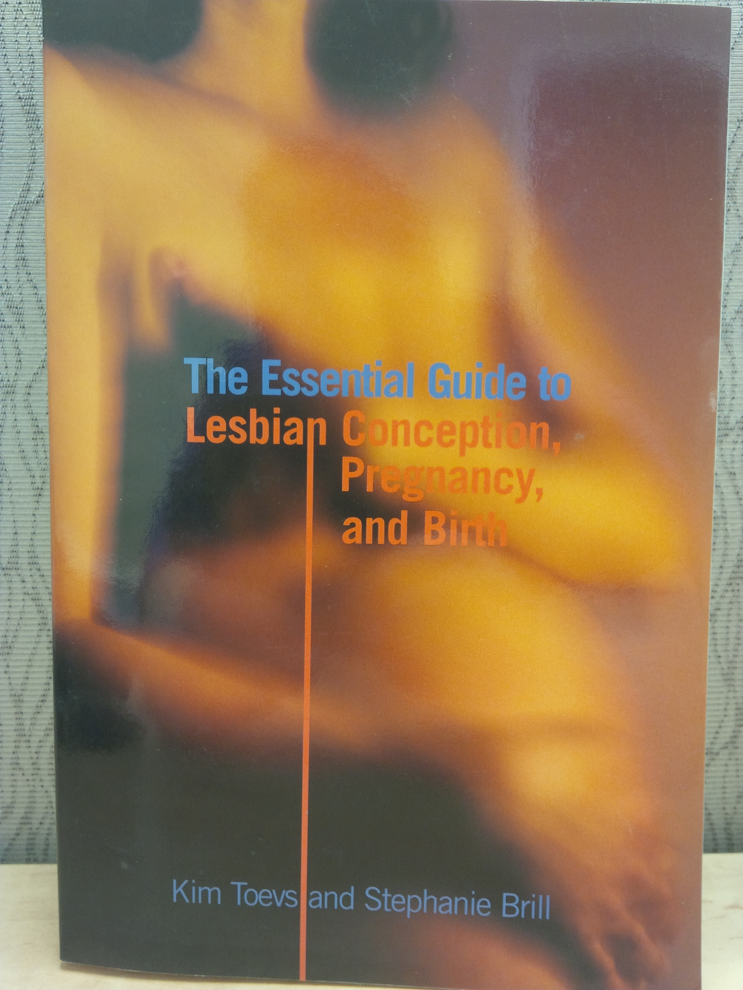 The Essential Guide to Lesbian Conception, Pregnancy, and Birth